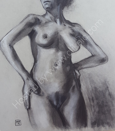 Charcoal and chalk 5