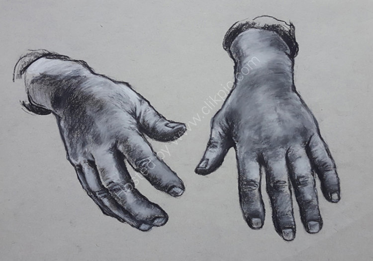 Hand study no 5