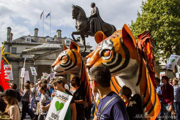 Climate Demo Tigers