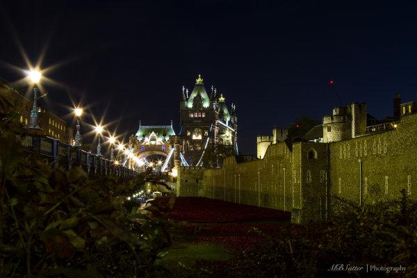 Tower Bridge & Poppies 3
