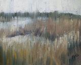 Blythburgh Reeds