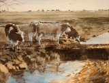 Cattle on Town Marshes, Southwold