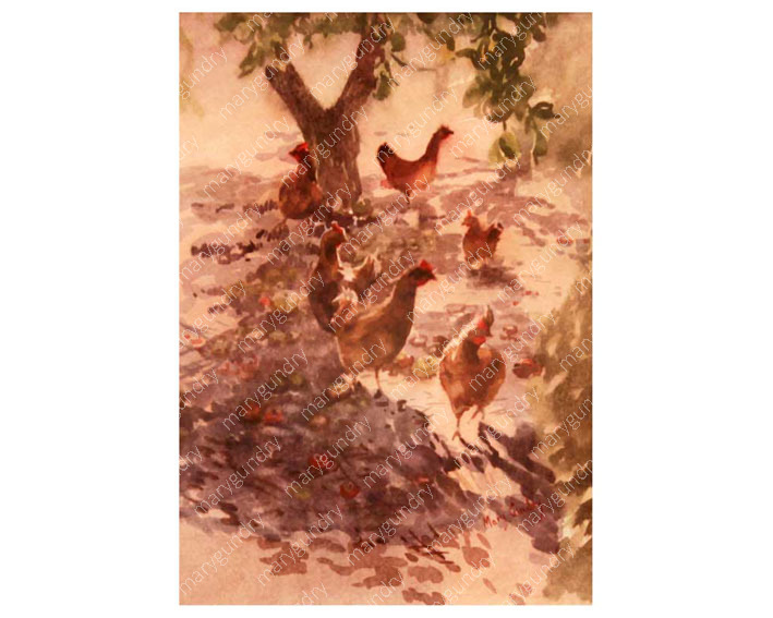 Hens in an Orchard