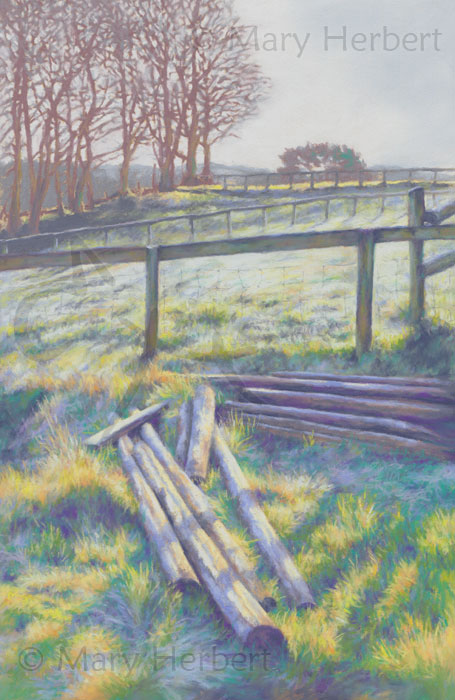 Frost and Fences
