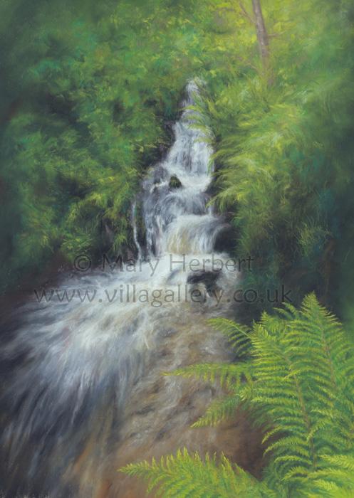 Ystwyth Valley Wilderness