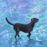Black Labrador. SMALL PAINTING