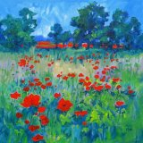 A Meadow of Poppies