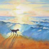 Border Collie at Sunrise