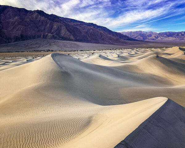 Whipped Dunes