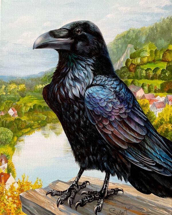 Free Raven of Hampshire