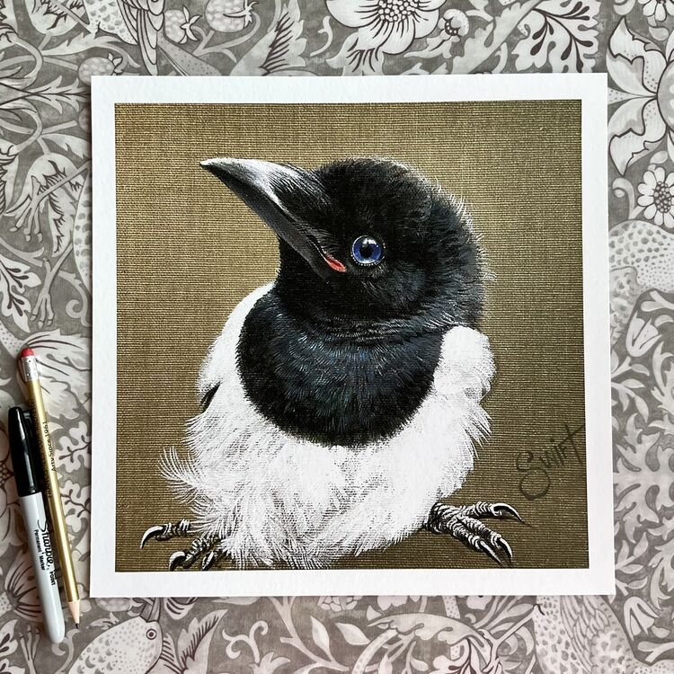Baby Magpie high quality giclee print from original acrylic painting on natural canvas