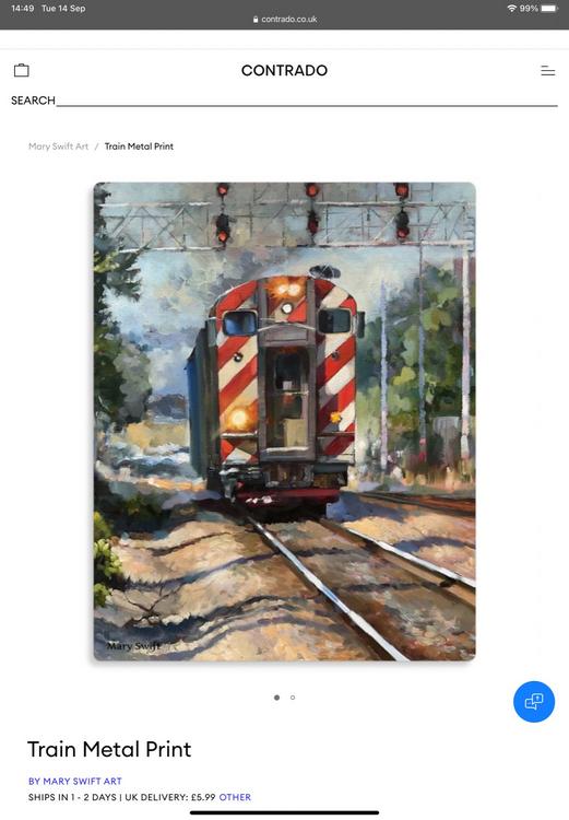 Metal print The Train