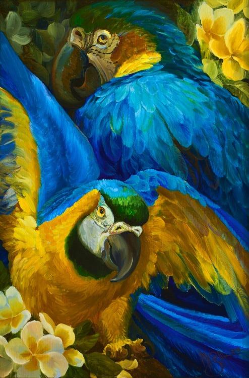 Blue Parrots (big)