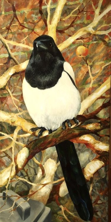 King Of All Magpies