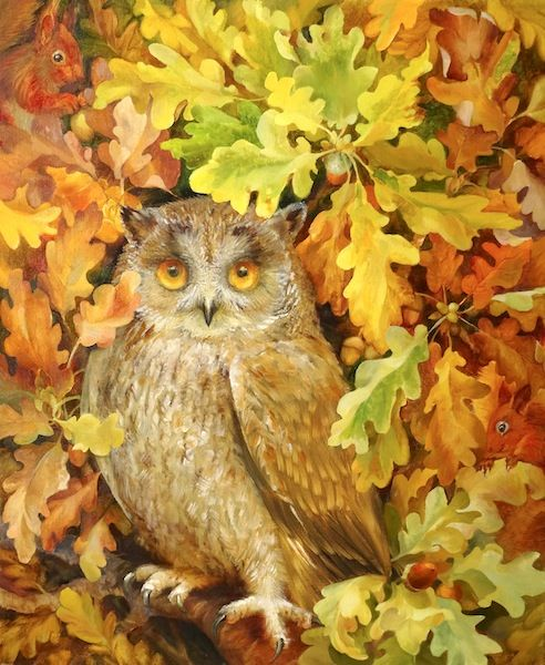 Owl and Squirrels