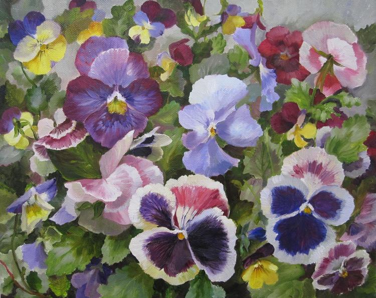 Pansies Violet