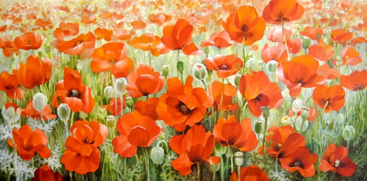 The red field of Poppies