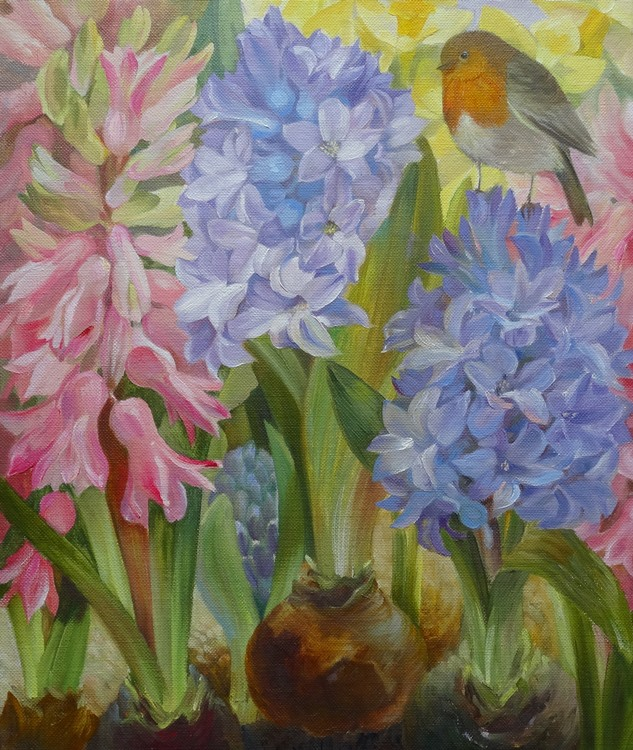 Robin bird in blue and pink hyacinths