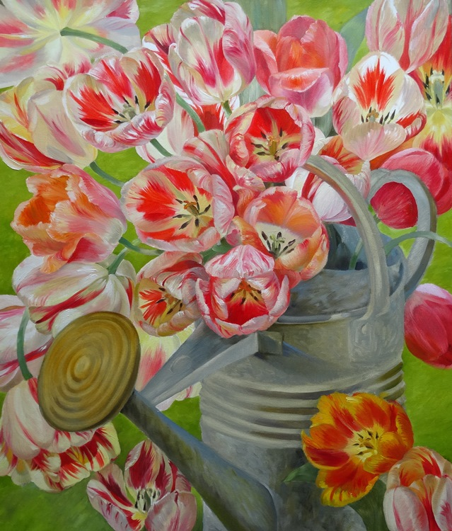 Tulips in a Watercan