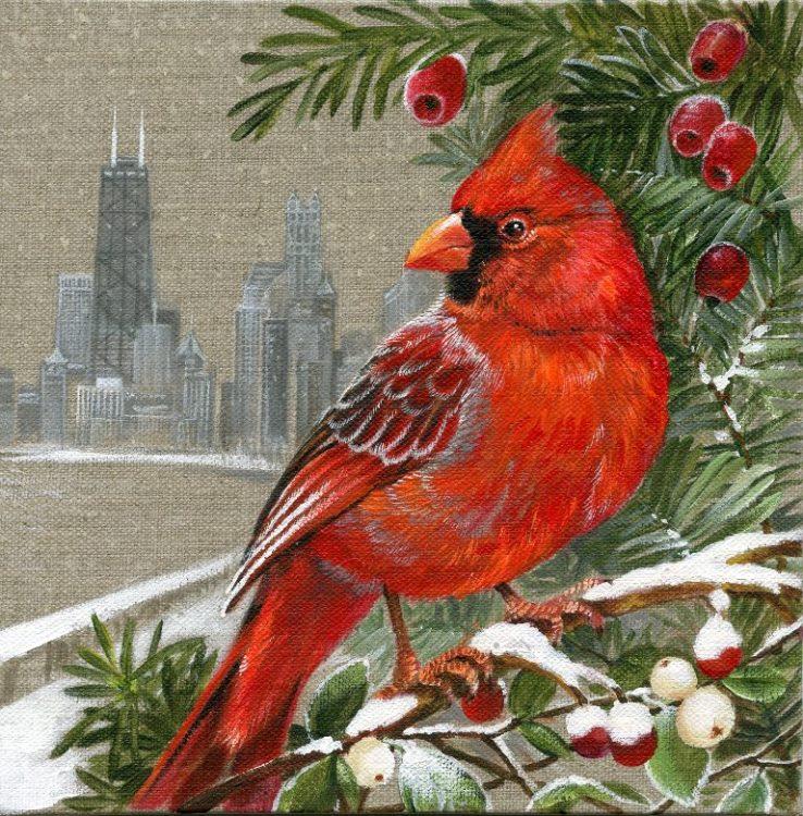 Cardinal of Chicago