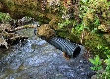 Dipper Nesting Tube