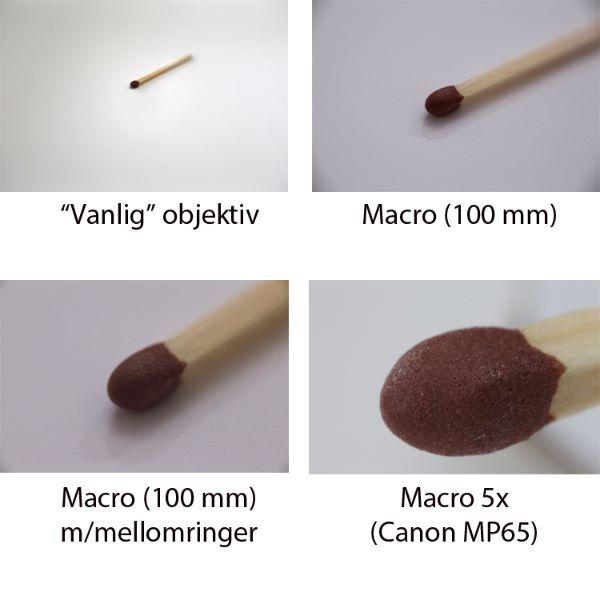 Fototips A - 18 - Macro - sammenligning