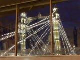 Albert Bridge Window