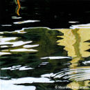 VENICE - GRAND CANAL - REFLECTIONS IV 40.8 x 40.8 cms.