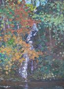 Waterfall, Perthshire