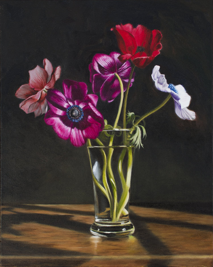 Anemones from Cornwall  (50 x 40 cms, oil on canvas, 2014)
