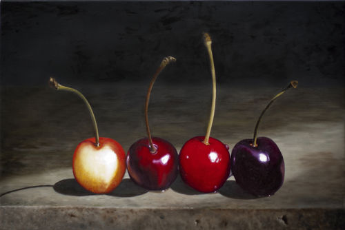 Four Kinds of Cherry (2012, oil on canvas, 36 x 53 cms)