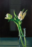 White Tulips Hit by the Sun  (2009, oil on canvas, 76 x 51 cms)