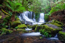 Horseshoe Falls, Tassie