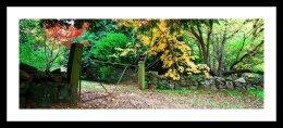 the gate, mount wilson