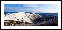 snow white, mt hotham Vic high country
