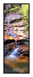 edith falls, woodford