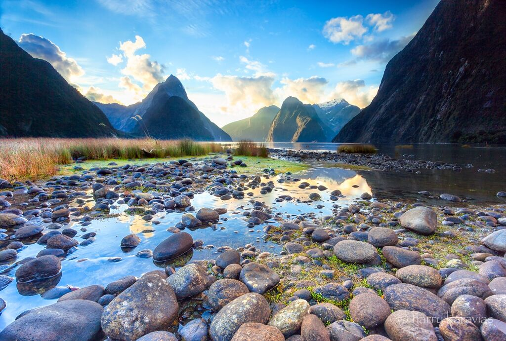 Milford Sounds, Awakening NZ