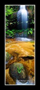 adelina falls, hazelbrook