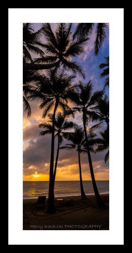 sunrise on the cove, palm  cove TNQ