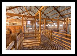 Arkaba Woolshed 4