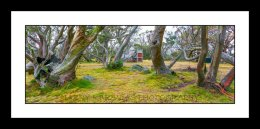 Wallace Hut, Vic High Country