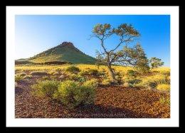 Pyramid Hill, Pilbara WA