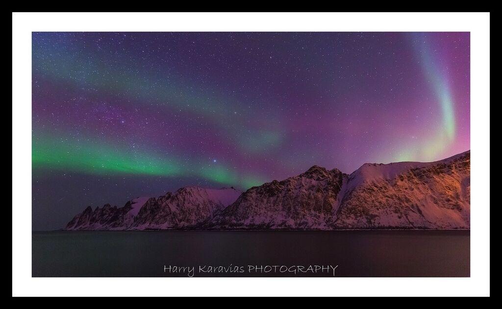 Dancing lights, Senja, Norway
