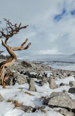 Snowstorm on Inglebrough