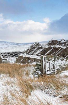 The Ruined Farm
