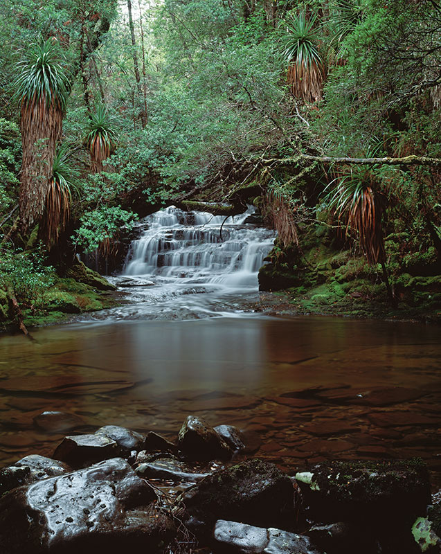 Waterfall on Cephissus Creek, Pine Valley