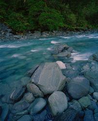 Beech Forest, Wilkin River