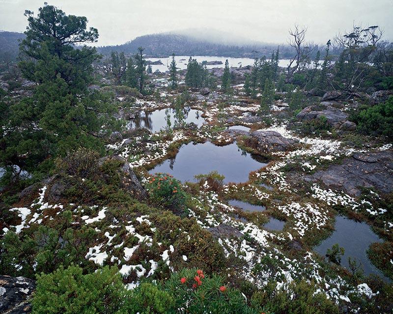 Tarn shelf, Lake Elysia
