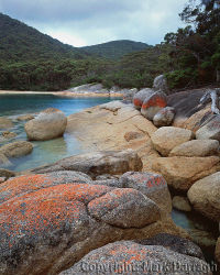 Shoreline, Refuge Cove