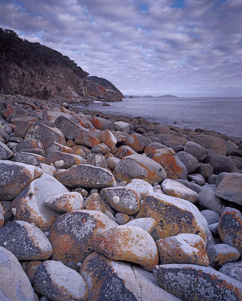 Lichen covered boulders, Bluestone Bay
